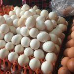 Giá trứng gà rẻ chưa từng thấy, đau xót lỗ gần 10 triệu đồng/ngày