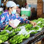 Có FTA xuất khẩu rau quả sang Hàn Quốc vẫn gian nan