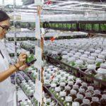 Phát triển nguồn nhân lực nông nghiệp 4-0 Yêu cầu cấp bách