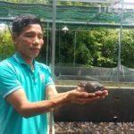 U50 kiếm hàng trăm triệu năm nhờ nuôi ếch Thái Lan