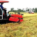 CPTPP và EVFTA tạo cơ hội lớn cho nông nghiệp