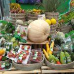 Lâm Đồng: Ứng dụng công nghệ cao vào sản xuất nông nghiệp