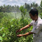 Doanh nghiệp đưa giải pháp chống hạn mặn nâng cao sản xuất