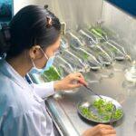 Thay đổi thương mại hóa sản phẩm nghiên cứu